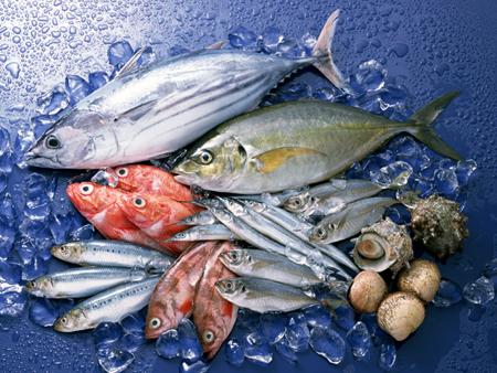 地魚が豊富にございます